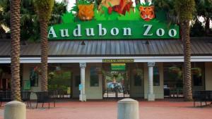 Audubon Zoo