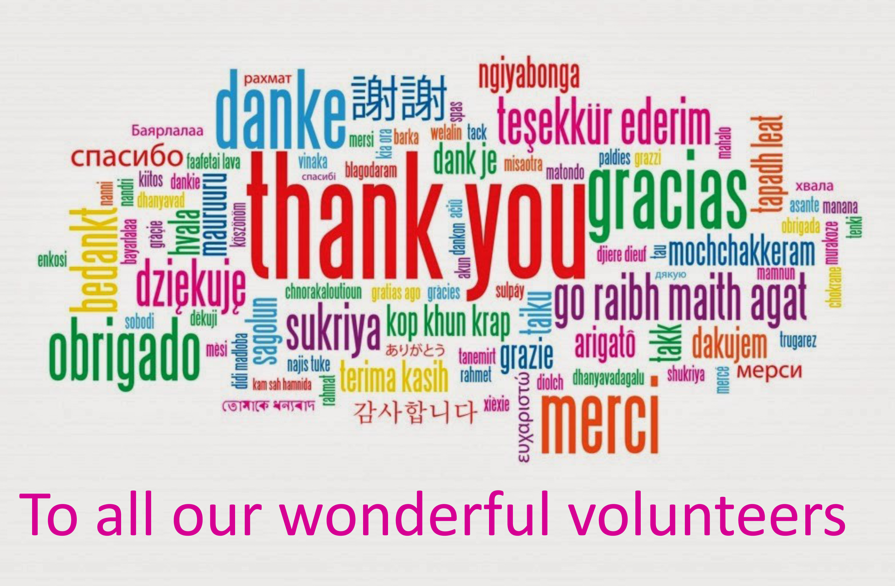 Thank You, Volunteers – Audubon PTO